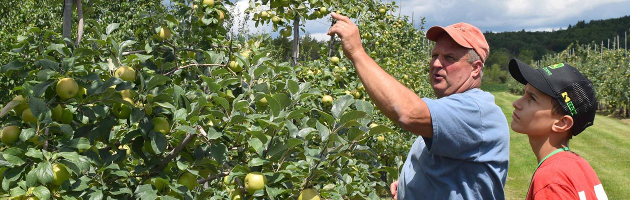 Agriculture PTECH student learns from apple growing farmer in an apple orchard